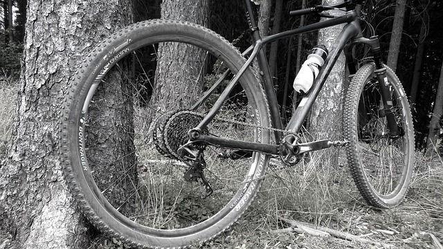 Excursió bicicleta